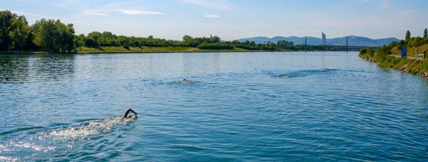 Fast die gesamte Wiener Donauinsel lädt zum Freiwasserschwimmen für Fortgeschrittene ein
